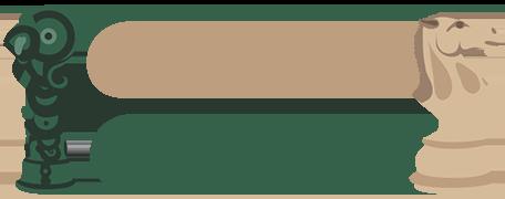 Chess Craft NZ Retina Logo